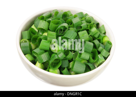 Bowl of Chopped Spring Onion - Stock Photo