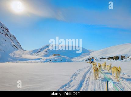 Dog sledding on a wintry Landscape, Arctic North Pole, greenland - Stock Photo