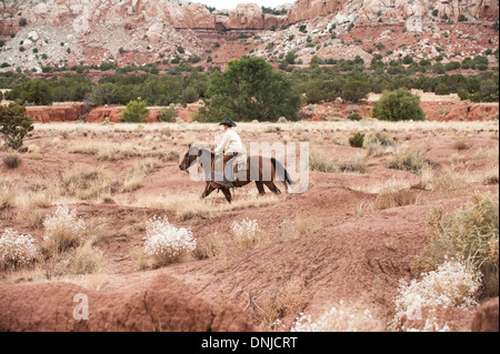 A lone cowboy riding an American Quarter Horse across the rugged plains of a New Mexico ranch. - Stock Photo