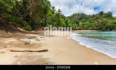 Remote Englishman's Beach between Caribbean island villages of Castara and Parlatuvier, Tobago, Trinidad & Tobago, - Stock Photo