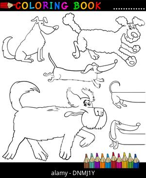 Nice ... Coloring Book Or Coloring Page Black And White Cartoon Illustration Of  Funny Purebred Or Mongrel Dogs