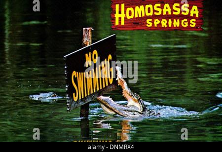 'Homosassa Springs - No Swimming' - Stock Photo
