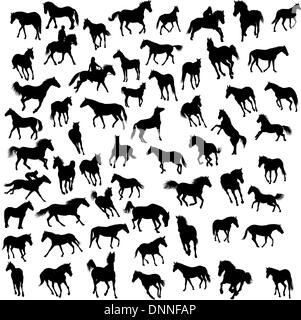 Big vector collection of different horses silhouettes - Stock Photo