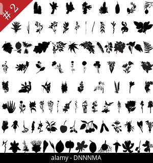 Vector collection of different plants and flowers silhouettes #2 - Stock Photo