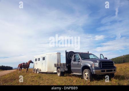 USA, Western Colorado, Horse trailer - Stock Photo