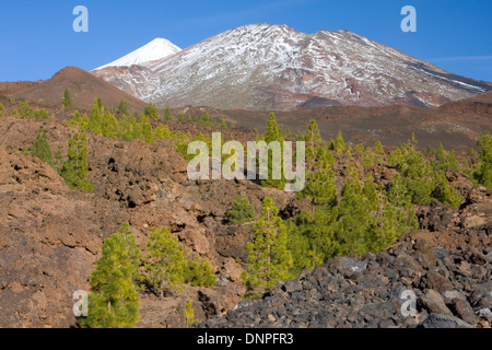 Mount Teide, Roques Blancos & Pico Viejo from volcanoes field - Stock Photo