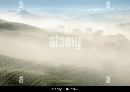 Landscape in morning with fog near San Quirico d'Orcia, Val d'Orcia, Orcia Valley, Siena district, Tuscany, Italy Stock Photo