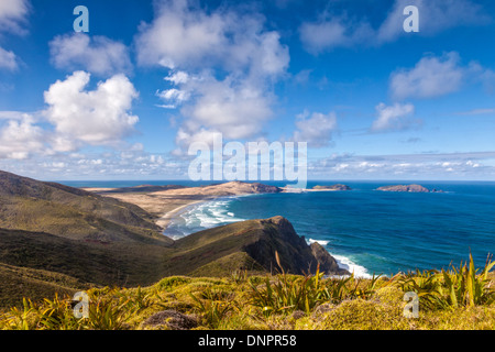 Cape Maria van Diemen from Cape Reinga, Northland, New Zealand. In the foreground are the miniature flax which grow - Stock Photo
