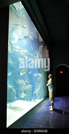 Oceanographic Museum Aquarium Monte Carlo Stock Photo