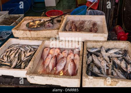 Seafood Market, Lantau Island, Hong Kong, China - Stock Photo