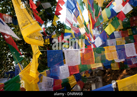Buddhist prayer flags at Dungeshwari cave temples, near Gaya, Bihar, India - Stock Photo