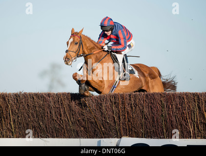One horse jumping over the last fence of a race. Winner. - Stock Photo