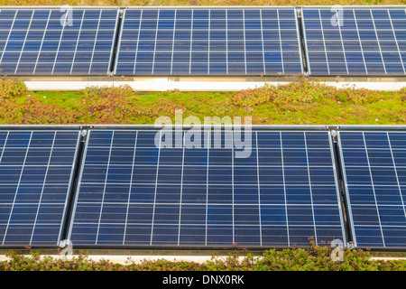 Solar panels on roof (with green garden) - Stock Photo