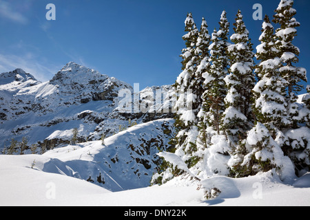 WASHINGTON - Snow covered side of Frisco Mountain from the Maple Pass Trail in the North Cascades; Okanogan National - Stock Photo