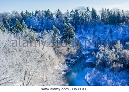 Ice covered trees in valley of Highland Creek in Colonel Danforth Park after freezing rain in Toronto Ontario Canada - Stock Photo