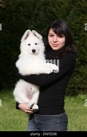 White Swiss Shepherd Dog / Berger blanc Suisse  / a girl with a puppy in a garden - Stock Photo