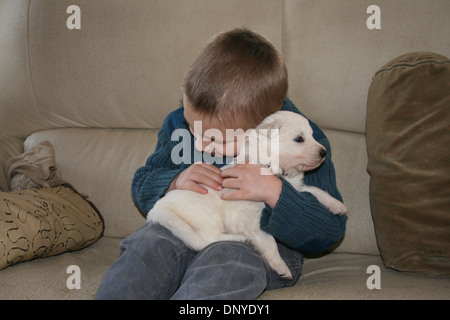 White Swiss Shepherd Dog / Berger blanc Suisse  / Child with a puppy on a sofa - Stock Photo