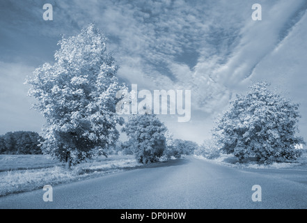 Warped road - Stock Photo