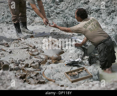 Apr 11, 2006; Everglades, FL, USA; Massive bones of what experts believe belonged to one or several ancient giant - Stock Photo