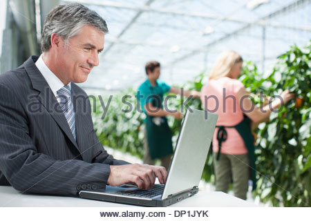 Businessman working on laptop in greenhouse - Stock Photo
