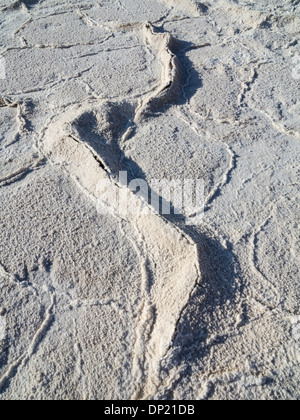 Salt crusts at the Badwater Basin, salt flats in the Death Valley, lowest point in North America, Death Valley National - Stock Photo