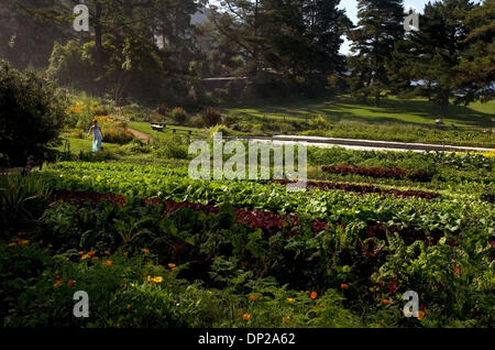 May 24, 2006; Sacramento, CA, USA; A visitor walks through the organic garden at Esalen Institute, Wednesday, May - Stock Photo
