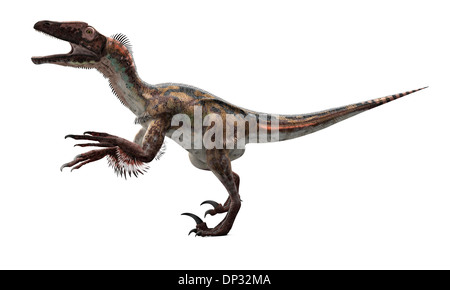 Utahraptor dinosaur, artwork - Stock Photo