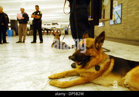 Sep 10, 2006; San Francisco, CA, USA; Sandro is one of three German Shepard explosive detecting dogs that will be - Stock Photo