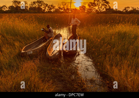 Two native men with makoro dugout canoes highlighted by orange glow of bright sun on horizon in Okavango Delta, - Stock Photo