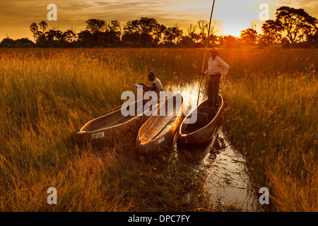 Two native guides with makoro dugout canoes highlighted by orange glow of bright sun on horizon in Okavango Delta, - Stock Photo