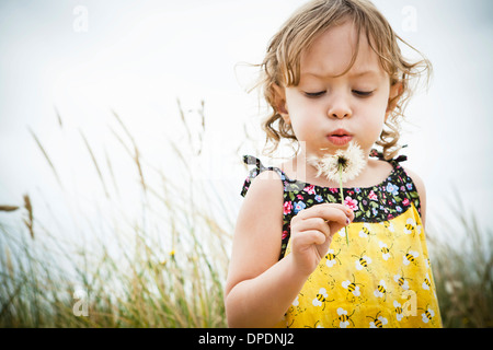 Portrait of female toddler with dandelion clock - Stock Photo