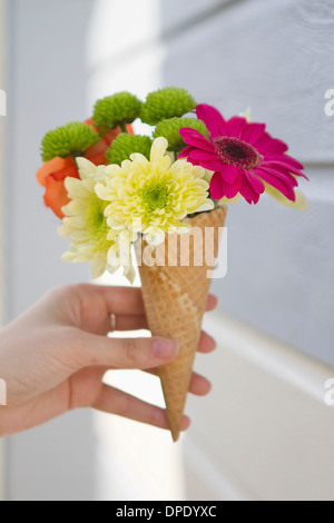 Detail of female hand holding flower cone - Stock Photo