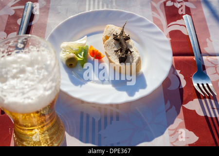Unusual dish with lizard, bread, vegetable and glass of beer. - Stock Photo