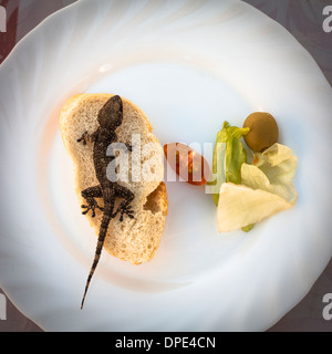 Lizard and bread with vegetable on plate - Stock Photo