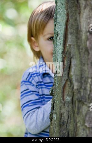 Boy peeking from behind tree - Stock Photo