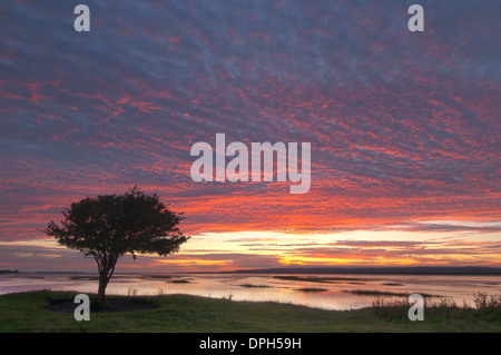 Sunset at Penclawdd, north Gower - Stock Photo