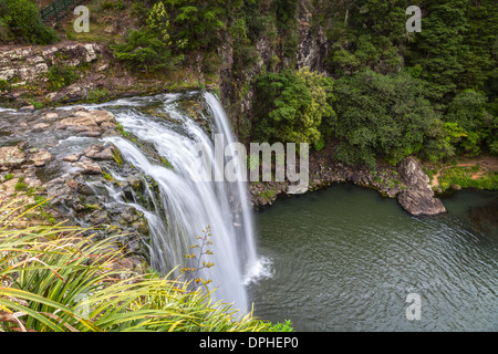 Whangarei Falls on the Hatea River in Northland, New Zealand. - Stock Photo
