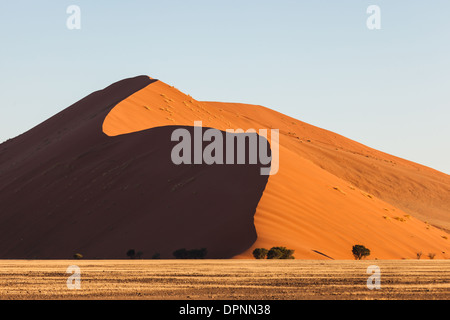 The red sand dunes rise high as mountains in Sossusvlei National Park, Namibia - Stock Photo