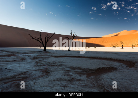 Sunlight creeps into desert as sun rises to illuminated part of the bright red sand dune and whitish dry cracked - Stock Photo