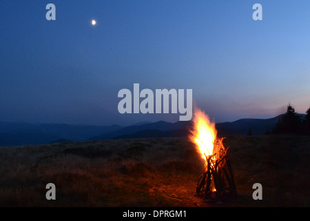 stick tree bonfire night orange grass campfire light smoke moon vesper sparks flame wood forest color outdoors sunset - Stock Photo