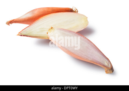 Shallots - John Gollop - Stock Photo