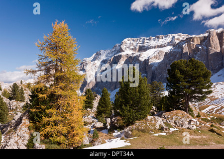 view north from above the Sella Pass towards the Sella Group in autumn, with early snow; Dolomites, north Italy. - Stock Photo