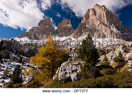 View up towards the Sassolungo group of mountains from the Sella Pass, across the 'stone city' in autumn; Dolomites, - Stock Photo