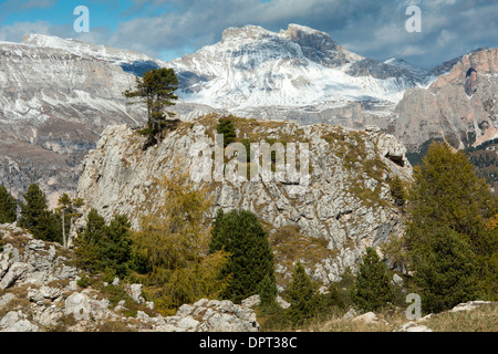 View northwards across the 'city of stones' on the Sella Pass, with Arolla p;ines; autumn. Dolomites, north Italy. - Stock Photo