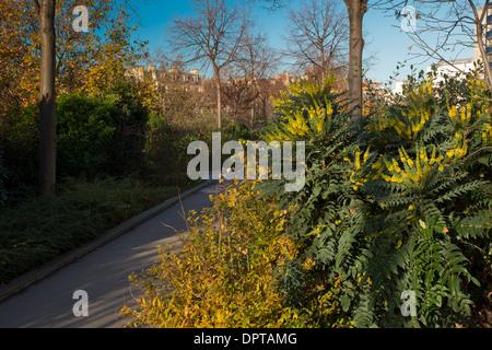 On the Promenade plantée or the Coulée verte, a linear park along an old railway line at Bastille, Paris, France. - Stock Photo