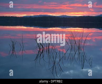 Loch Garten at Sundown, Nethybridge. Cairngorms National Park. Inverness-shire. Scotland. SCO 9215 - Stock Photo