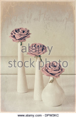 Three roses with texture overlay - Stock Photo