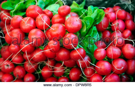 FRESH RADISHES IN A STREET MARKET IN THE UK - Stock Photo