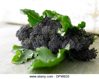 purple sprouting broccoli - Stock Photo