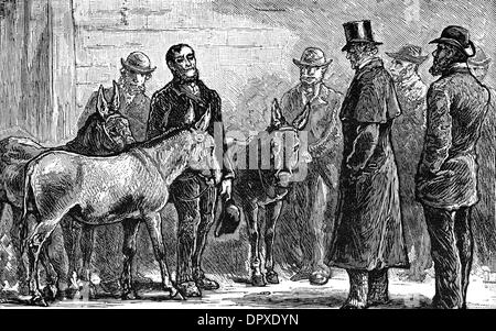 SHAFTESBURY & DONKEYS - Stock Photo
